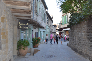 Carcassonne medieval town