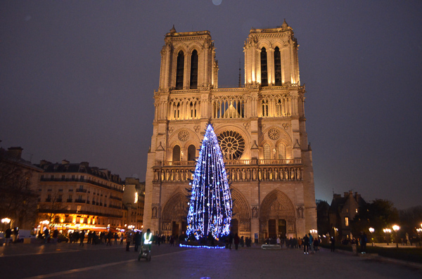 christmas in france notre dame tree