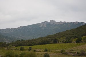 Peyrepertuse in the Pyrenees foothills