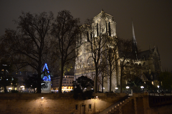 paris at christmas tree notre dame